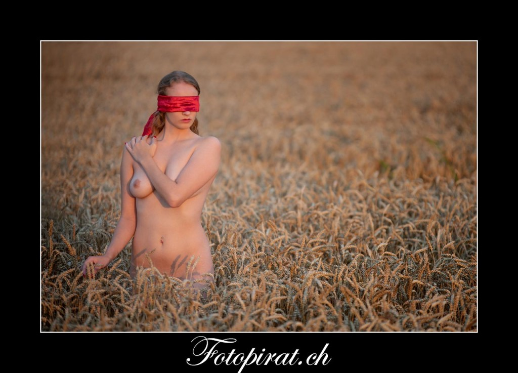 Kornfeld Fotoshootiong, Anonymer Akt, Akt Fotoshooting, Bachelor Kandidatin, Blindfoldet, Akt Outdoor,