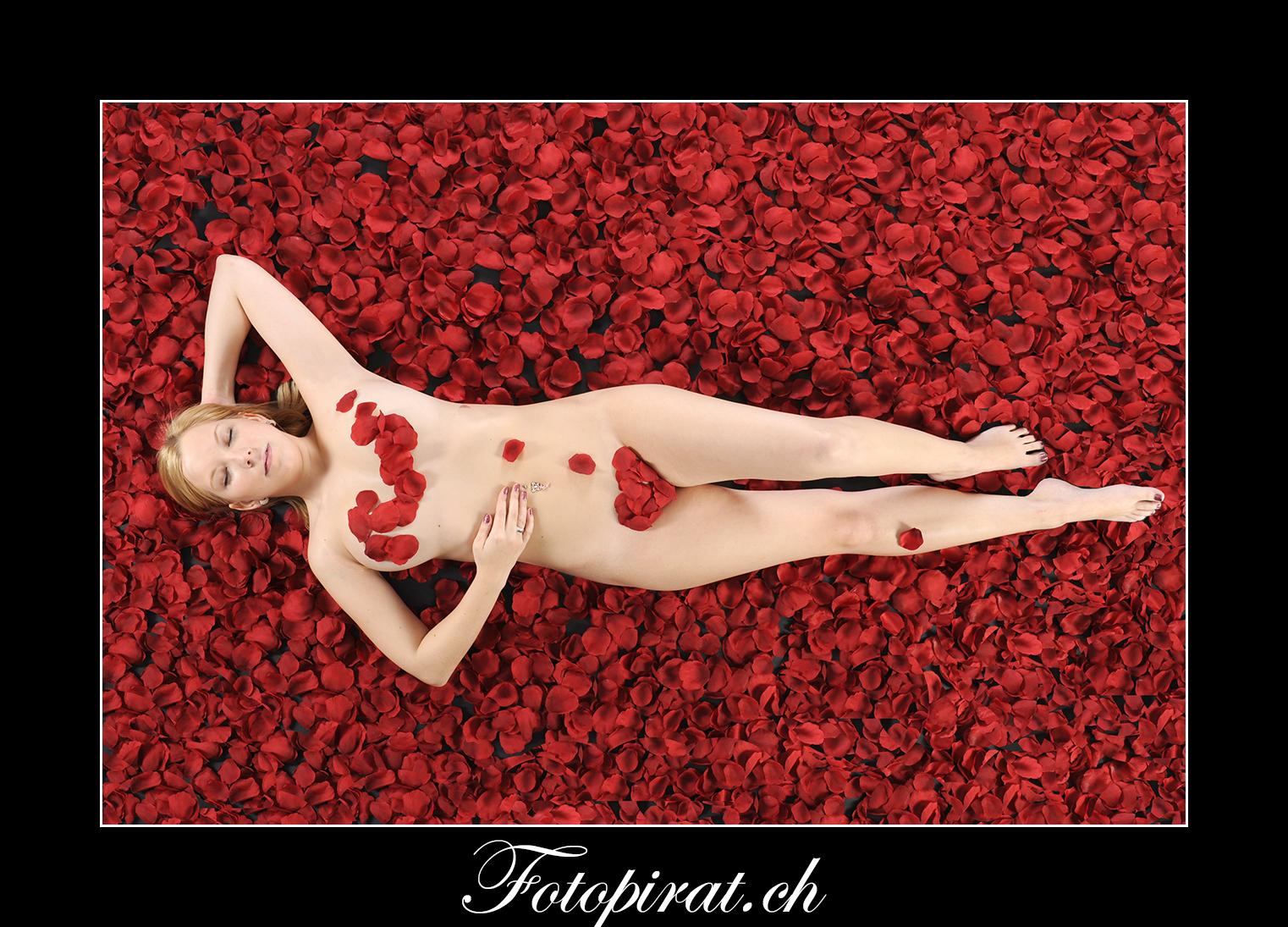 Fotoshooting, Fotostudio, Akt, Nackt, Nudeart, Nude, Modelagentur, Fotomodel, Rosenblätter, American Beauty, eyecatcher, Dessous