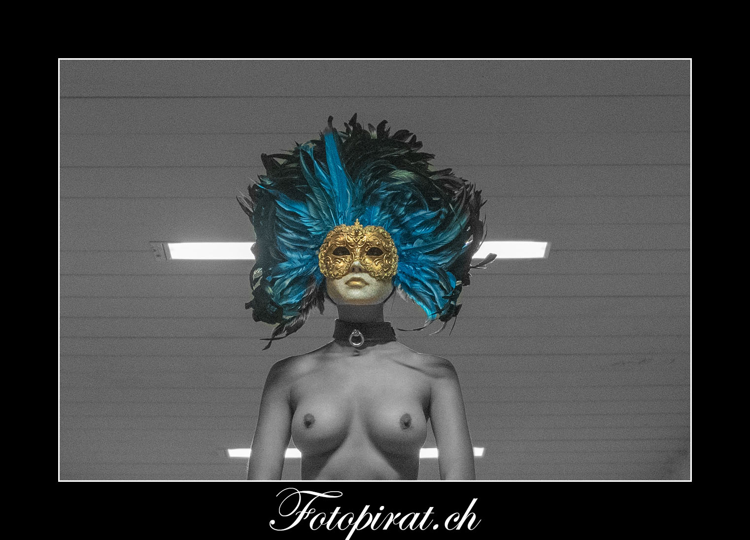 Eyes Wild Shut; Tom Cruise; Venezianische Maske; Nude; Bondage; SW; Color Key; Grosse Brüste; Halsband; Federmaske; Fotoshooting Zürich; Spezial Fotoshooting
